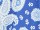 ROYAL PERIWINKLE PAISLEY